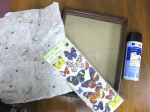supplies needed for framed butterfly art work