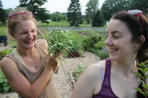 The Memorial to John Paul Endicott at Temple University Ambler Food Crops Garden photo