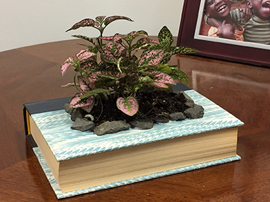 DIY Mom's favorite book into a lovely planter for Mother's Day using this free tutorial from Impact Thrift Stores located in Feasterville, Montgomeryville and Norristown PA